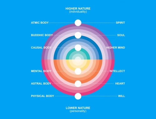 The Subtle Bodies and the Two Natures
